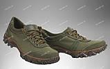 Военные кроссовки / летняя тактическая обувь FENIX (olive), фото 2