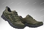 Тактические летние кроссовки / военная обувь Comanche Gen.II (olive), фото 2