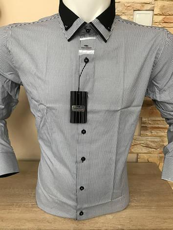 Сорочка довгий рукав Franko Manutti, фото 2