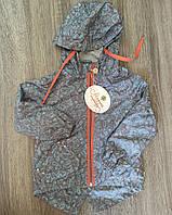 Куртка - ветровка детская для мальчика Модный карапуз