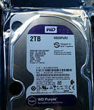 Жесткий диск HDD Western Digital Purple 2TB 64MB WD20PURZ 3.5 SATA III, фото 2