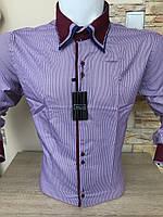 Чоловіча сорочка Franko Manutti