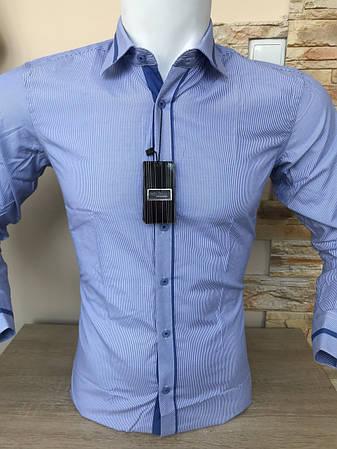 Блакитна сорочка в полоску Franko Manutti, фото 2