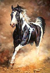 Пазлы Castorland 1000 элементов, 68х47 см, в коробке, Бегущая лошадь (животные)
