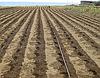Капельный полив-набор  Садовод Профи 100 система капельного орошение на одну сотку, фото 9