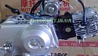 Двигатель   Delta, Alpha 50cc   (AКПП 139FMB, водяное охлаждение)   TZH