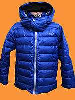 Куртка Зимняя для мальчика 3-4 года 98 Puledro (Турция)