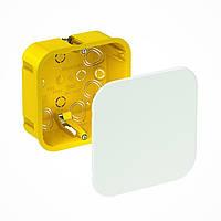 Коробка распределительная Schneider Electric 100х100х50, для полых стен (IMT35161)