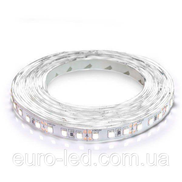 Светодиодная лента 2835-120 W белый, негерметичная, 1м
