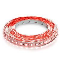 Світлодіодна стрічка 3528-120 R IP20 червоний, негерметична, 1м, фото 1