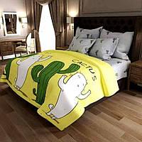 Постельное белье Бязь, комплект постельного белья Кактус