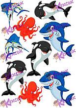 Вафельная картинка Акулы