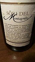 Вино 1993 года Sori Del Montagrillo Италия, фото 3