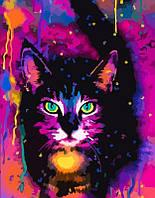 Картина по номерам  Space cat  35*45   арт.13223