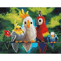 Алмазная живопись мозаика  по номерам на холсте 30*40см BrushMe EJ1009 Папуги