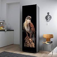 """Виниловая наклейка на холодильник """"Ястреб""""., фото 1"""