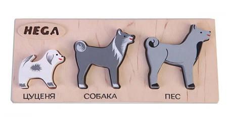 Набор фигурок-вкладышей HEGA 124 собаки, дерево, 3 шт, фото 2