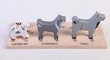 Набор фигурок-вкладышей HEGA 124 собаки, дерево, 3 шт, фото 3
