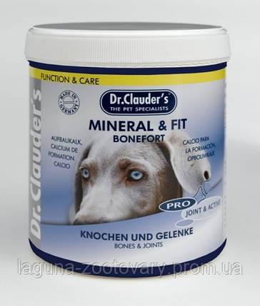 БОНЕФОРТ 500гр /Д-р Клаудерс/Витаминно-минеральная добавка для собак, фото 2