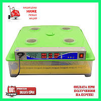 Инкубатор MS-98 с автоматическим переворотом яиц (Гарантия 12 месяцев)