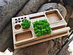 Органайзер для канцтоваров с мохом, фото 4