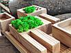 Органайзер для канцтоваров с мохом, фото 5
