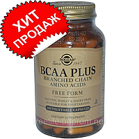 Solgar BCAA Plus в свободной форме 100 шт, официальный сайт