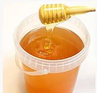 Мед из чабреца натуральный 0,5 л