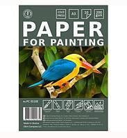 Набор бумаги для рисования А3 10 листов (200г/м2) п/п пакет Офорт PC3510E