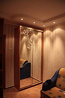 Шкаф-купе Браун-14, Размер шкафа на фото 1200*450*2400