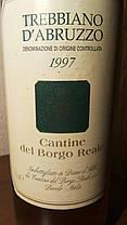 Вино 1997 года Trebbiano d'Abruzzo Италия белое, фото 2