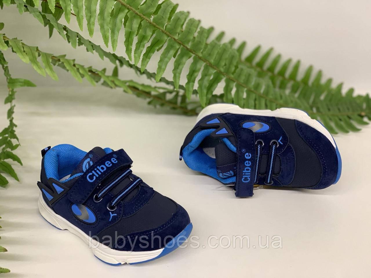 Кроссовки для мальчика Clibee Польша р.21, 24  КМ-414