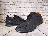 Мужские  кожаные кроссовки  перфорация Yavgor, фото 1