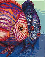 Набор, техника акриловая живопись по номерам, ''Рыбы'', ROSA START