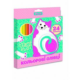 """Олівці 1 Вересня 24 кол. """"I am a cat"""", пласт. корп."""