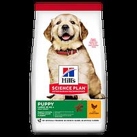 Hill's SP Puppy Large Breed Chicken для щенков крупных пород 14.5 кг