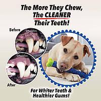 Зубная щетка для чистки зубов у собак Сhewbrush для средних/больших пород, зубная щетка для собак и котов