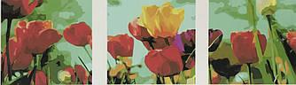 Картина по номерам Садовые тюльпаны (Триптих), 50x150 см., Babylon