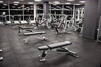 Основні види тренажерів в спортзалі та їх призначення.
