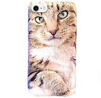 "TPU чехол Мягкие коты для Apple iPhone 7 / 8 (4.7"")"