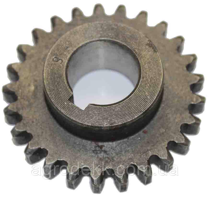 Шестерня парная вторая 81.37.140, для мотоблока Zirka SH61, 25 зубов