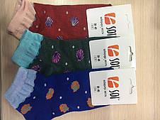 Шкарпетки спортивні жіночі  23-25 р. (36-40) з принтом, фото 2