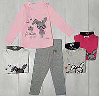 Комплект для девочки демисезонный, футболка длинный рукав+лосины (Заяц в очках), Breeze