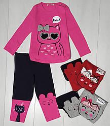 Комплект для девочки демисезонный, футболка длинный рукав+лосины (Котик), Breeze
