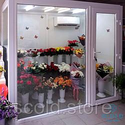 Холодильні вітрини для квітів
