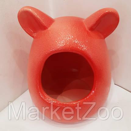 Домик-ванна для шиншилл,крыс,дегу, фото 2