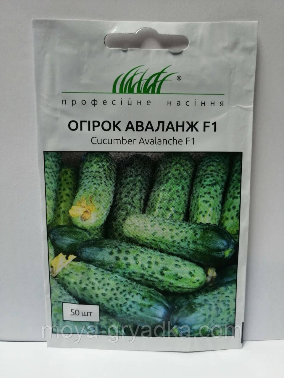 """Насіння огірків Аваланж F1 50 нас ТМ""""Професійне насіння"""""""