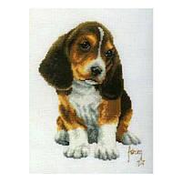 Набор для вышивания Бассет Вервако 2002/70063
