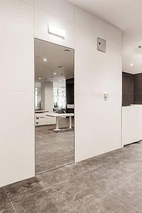 Двери скрытого монтажа с зеркалом, фото 2