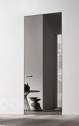 Двери скрытого монтажа с зеркалом графит, фото 2